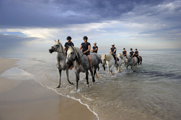 South Australia police officers take police horses for an early morning swim at Semaphore beach, Adelaide
