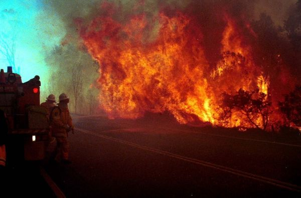 Rural Fire Service personnel attempting to put out bushfires that swept through the northwest Sydney suburb of Glenorie