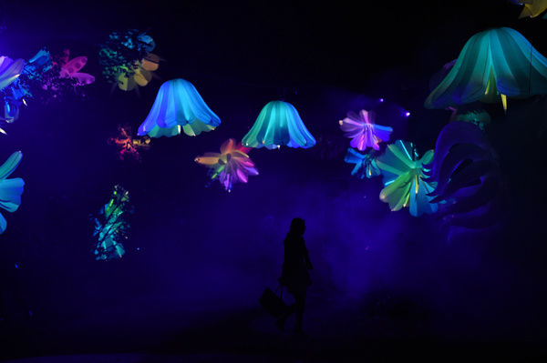 A member of the public enjoys the preview of the NightFest light show at the 2014 Floriade in Canberra