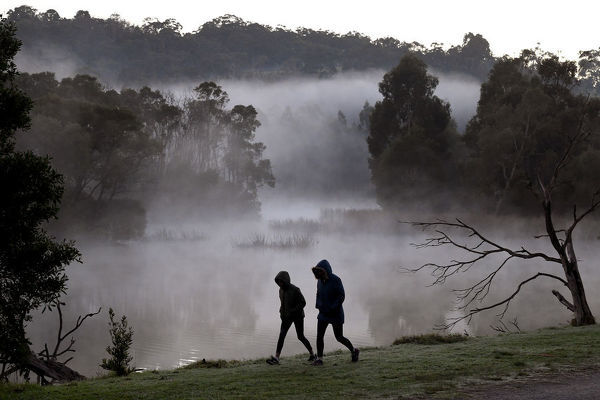 Two early walkers brave the cold weather at Birdsland reserve in Belgrave South, east of Melbourne, Friday, June 1, 2018
