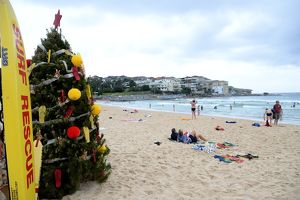 Bondi Beach Christmas Tree