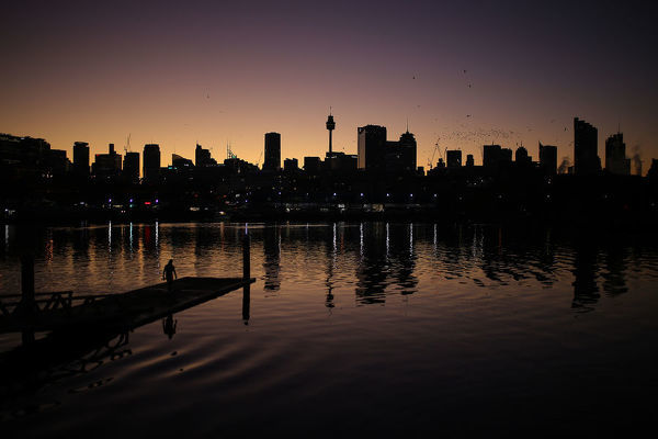 The Sydney skyline can be seen as a person walks onto a pontoon in Blackwattle bay during sunrise in Sydney, Wednesday, June 12, 2019. (AAP Image/Steven Saphore)