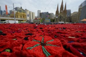 5000 POPPIES MELBOURNE