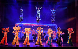 <b>Priscilla Queen of the Desert</b><br>Selection of 12 items